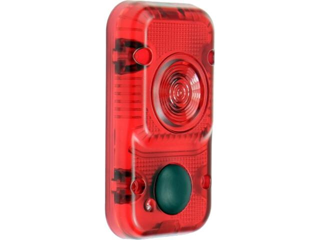 Lupine luz roja Barolo-Kit